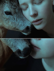 Quiescence (laura makabresku) Tags: laura makabresku deer girl pale light delicate love lovers fairy tale