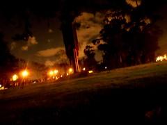 Iron tree (Rod Go) Tags: universidad nacional de colombia noche night park