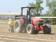 Peanut Planting 2 (UGA College of Ag & Environmental Sciences - OCCS) Tags: uga tifton campus peanuts planting