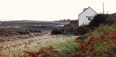 Wales.  September 3rd.-10th. 2000 (Cynthia of Harborough) Tags: 2000 architecture beaches coasts grasses views water