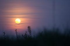 Sunset - (Not Edited) (björnvasselai) Tags: astro landscape lowkey moon outdoor plätzchen sky sunset tübingen