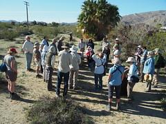 Q3266899 Joshua Tree National Park visitor center SBMNH docents tour group (ceztom) Tags: march 26 2017 wilsoncanyon whitetank joshuatree nationalpark