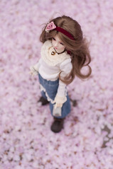 Cherry blossom (A place for Millimina) Tags: annie bjd msd dollzone dzannie