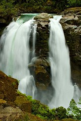 waterfall #5(casc. N.P.)(sh) (Dannyboy221) Tags: water waterfall washington state pk cascade natl
