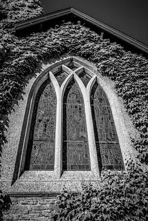 Ivy Frame - Walker Memorial Window - John Bell Chapel