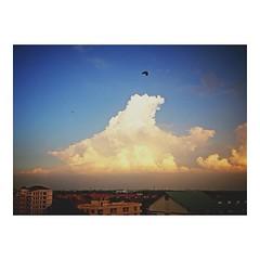 บินไปเกนจิ! ☁ #himorning #sky