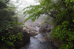 Huangshan-1 (Sean Maynard) Tags: china travel mountain mountains tree tourism creek river scenery stream unesco shan  touristattraction huangshan anhui  touristarea anhuiprovince