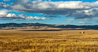 Golden plains of Carrizo