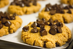Chocolate Chip Peanut Butter Cookies (revrev) Tags: food recipe dessert cookie chocolate low butter peanut lowcarb flax carb keto