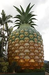 Big Pineapple on the Sunshine Coast (Anna Calvert Photography) Tags: sky holiday monument clouds palms scenery large australia tourists pineapple queensland sunshinecoast bigpineapple