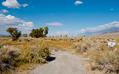 Land Grab (Photosuze) Tags: autumn signs fall landscape dirt drought roads owensvalley environmentalimpact cityoflosangeles