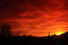 Arizona Sunset (aeneas66) Tags: park travel sunset wallpaper arizona sky orange southwest west tourism nature horizontal clouds america landscape afternoon desert dusk background horizon peak ground historic dirt valley serenity western summit saguaro spiritual ocotillo