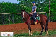 Pausa para uma foto (Rodnei Reis Fotografia Sacramento/MG/BR) Tags: horse minasgerais girl brasil rural amazon farm mulher riding cavalos cavalo fazenda amazona equitation novohorizonte horsewoman equitao equoterapia darktable