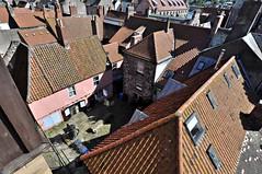 berwick-rooftops