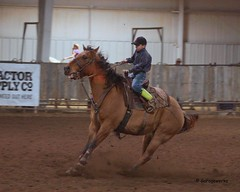 Bar None Jr Rodeo (Garagewerks) Tags: boy male sport youth bar turn cowboy all none barrels sony barrel sigma indoor jr racing arena burn rodeo cans cowgirl athlete f28 equine 70200mm views100 views200 slta77v