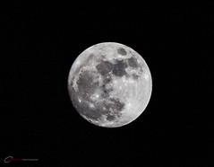 Full Moon (BrettAnderson_) Tags: sky sun moon mountain face minnesota night canon stars rebel highlands space plymouth minneapolis surface crescent telephoto nighttime galaxy crater mn lunar orbit t3i 600d