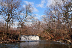 The Bronx River - January 15, 2014 (Eddie C3) Tags: nyc newyorkcity nature bronx waterfalls bronxzoo natureinthecity bronxriver bronxpark naturewalks