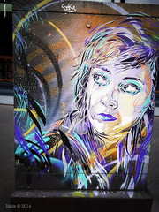 C215 (Bts) Tags: streetart paris lumix graffiti panasonic bnf c215 arosol gx7