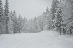 Paysages 198 (Benoit ANCELIN) Tags: nature jura neige paysage hivers rousses