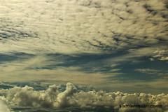 NUBE CON ALTURA. CLOUD WITH HEIGHT. GUAYAQUIL-ECUADOR (ALBERTO CERVANTES PHOTOGRAPHY) Tags: nubes clouds guayaquilecuador cielo ciudad city azul blanco gris gye guayaquil blue white sky photography perladelpacifico guayaquildemisamores pearlofpacific perla pearl pacifico pacific amores guayas ecuador pais country retrato portrait ecuadorgye luz light bright brillo brightcolors colores colors photoborder indoor outdoor blur skyscraper landscapes skyline cityscapes republicadelecuador
