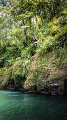 I am FREE! (fibonaccist) Tags: backflip swimming freedom adventure sumatera westsumatera indonesia nokia808 pureview fun