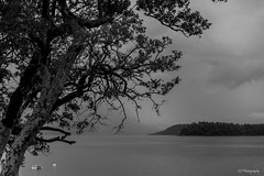 Bring me here in silence (.KiLTRo.) Tags: panguipulli regióndelosríos chile kiltro lake lago agua water rain clouds mist tree boat