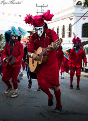Danza de los Diablos (Pepe_Morales) Tags: pepemorales dance danza people méxico mexico guerrero tradiciones tradition travelphoto travel devil diablos mexicanos guitar