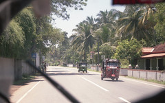 Matara Road (giuliopascucci) Tags: srilanka asia nature wild summer 2017 journey trip voyage travel sand palm tree trees sea seaside seascape sunset sunrise sun surfing surfboard surfer surf longboard longexposure photography photo film 35mm fisherman local locals fruit colors love hot sunnyday street streets tuktuk friends chill chilling tea teaplantations beach people fun beauty beautiful amazing srilankaexploring sky singlefin world wave waves water blue holiday culture favorites