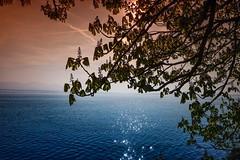 Psalm 23 (yarin.asanth) Tags: bodensee lakeconstance god leaves soft waves waterstars surface germany lindau april yarinasanth gerdkozik gerdmichaelkozik sun sunset sundown lake psalm23