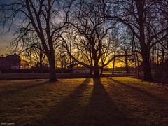 Sonnenuntergang (fredy_egdorf) Tags: 2017 burgvischering gebäude lüdinghausen sonnenuntergang technik luminar