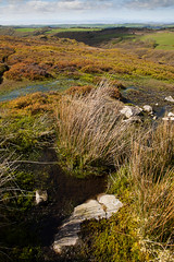 1920p 72dpi-7193 (reach.richardgibbens) Tags: bowland lancashire england uk littledale fell moorland moor valley dale