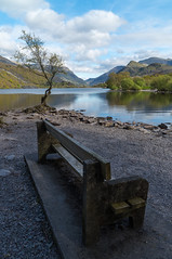 Perfect place to relax (Jon.K.UK) Tags: llyn padarn lake snowdonia wales tree landscape sky water mountains clouds nature bench nikon d750 zeiss 21mm