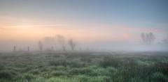 De polder van Lier (dirkvervoort) Tags: lier landschap sunset fog landscape belgium