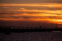 Sunset by the beach (Maria Eklind) Tags: horizon ribersborg sunset nature himmel sweden outdoor ribban sun ocean beach öresund malmö strand ribersborgsstranden water brygga solnedgång sunlight bridge solljus horisont sky skånelän sverige se
