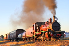 Late Afternoon Departure (Dylan B`) Tags: qr queensland rail southern downs steam railway warwick clifton toowoomba train c17 971 sunset afternoon sunny