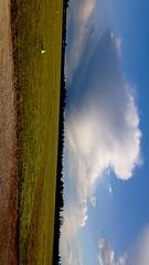 Weather Cloud - Sky Cumulus Cloud Cumulonimbus Wind Rain Grass Airport Landscape Airplane Airport Runway Flight (BaptisteMonet) Tags: weather cloudsky cumuluscloud cumulonimbus wind rain grass airport landscape airplane airportrunway flight