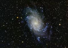 Messier 33, the triangulum galaxy (markus_langlotz) Tags: galaxy galaxie messier33 triangulum dreiecksnebel astronomy deepsky ccd qhy10 sky astronomie astrometrydotnet:id=nova2014621 astrometrydotnet:status=solved