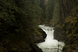 Lower Little Qualicum Falls