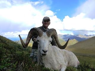 Alaska Dall Sheep Hunt & Moose Hunt 26