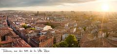 21,5x10cm // Réf : 10030741 // Toulouse