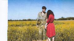 Je m'accroche à sa main comme à mon dernier rêve (Siréliss) Tags: siréliss soldier goodbye ghost war army yellow summer