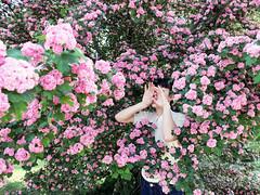 Chi non trova il paradiso quaggiù non lo troverà neanche in cielo (LaSandra.) Tags: sandralazzarini selfportrait fiori flowers pink rosa undercover hands mani girl spring primavera faceless mood