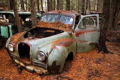 IMG_2762 (Irina Souiki) Tags: rusty crusty cars mcleansautowreckers milton ontario old oldcars