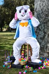 Bunny Rabbit (bighornplateau1) Tags: 2017 easterbunny egghunt2017 kids lbfnazarene longbeach portrait