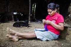 Aldeia Guarani_Foto de AF Rodrigues_64 (AF Rodrigues) Tags: afrodrigues aldeiaguarani guarani paraty rj riodejaneiro brasil bemquerer br programaproíndio uerj aldeiaindígina povodafloresta populaçãotradicional índio indígina