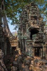 Angkor ( Philippe L PhotoGraphy ) Tags: cambodge saigonhanoi asiedusudest asie vietnam krongsiemreap siemreapprovince kh angkor ruines historique site