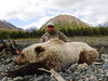 Alaska Dall Sheep Hunt & Moose Hunt 6
