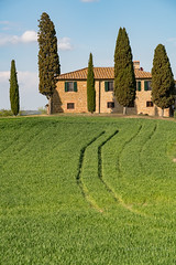 A9904845_s (AndiP66) Tags: agriturismoicipressini agriturismo icipressini pienza siena sanquiricodorcia valledorcia valle dorcia toscana tuscany italien italy sony alpha sonyalpha 99markii 99ii 99m2 a99ii ilca99m2 slta99ii sigma sigma24105mmf4dghsmart sigma24105mm 24105mm art amount andreaspeters