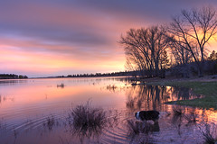 Lnydee in water at sunset (maryannenelson) Tags: colorado mancos jacksonlake sunset colors dusk landscape nonurban colorful