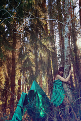 The Nymphea and the Dead Tree (stefaniebst) Tags: selfportrait autoportrait portrait portraiture poetry poetic nature tale fairytale conceptphoto conceptualphotography fineart fineartphotography forest forêt bois woodland woods underwood sunlight spring printemps storyteller